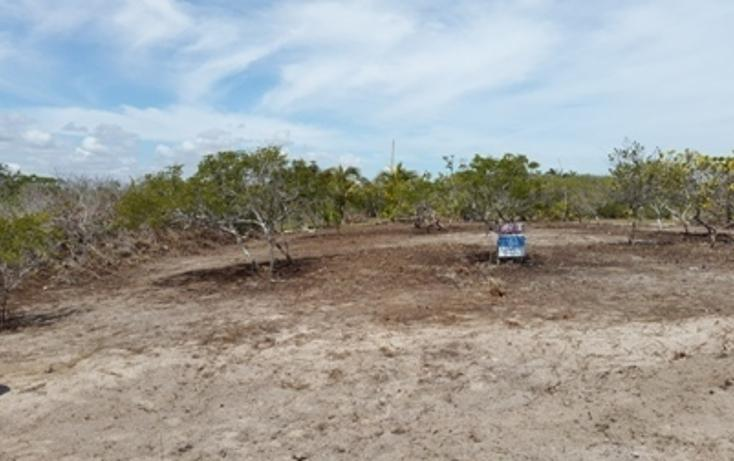 Foto de terreno habitacional en venta en, chicxulub puerto, progreso, yucatán, 937791 no 06