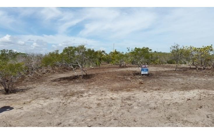 Foto de terreno habitacional en venta en  , chicxulub puerto, progreso, yucatán, 937791 No. 06