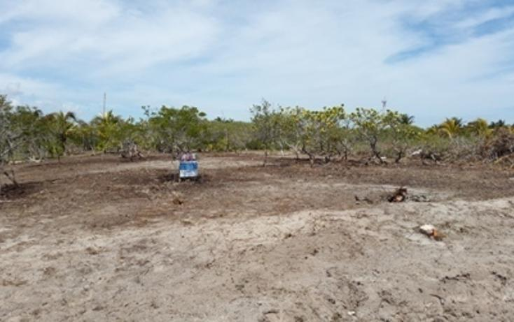 Foto de terreno habitacional en venta en  , chicxulub puerto, progreso, yucatán, 937791 No. 07