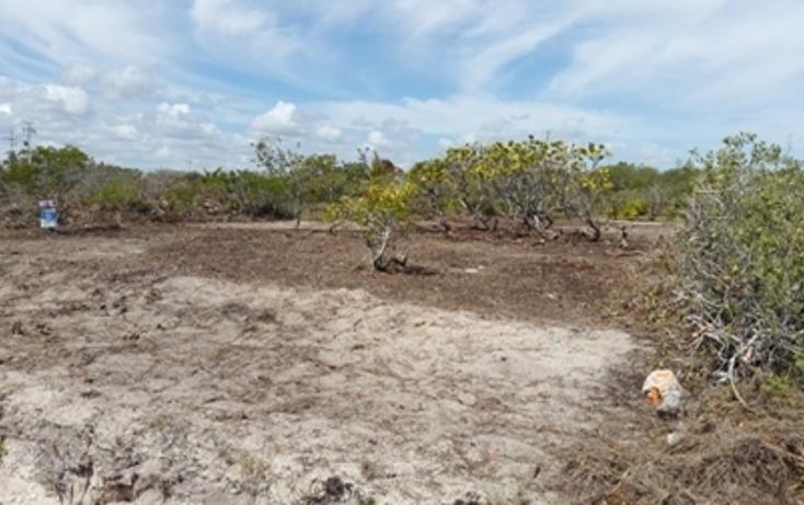 Foto de terreno habitacional en venta en, chicxulub puerto, progreso, yucatán, 937791 no 08