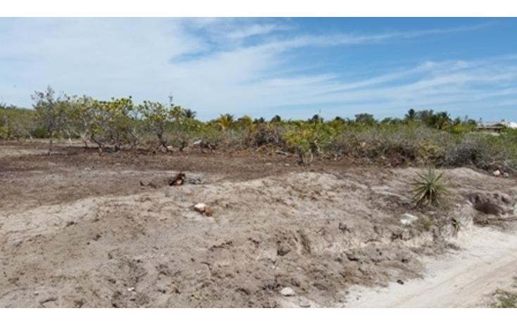 Foto de terreno habitacional en venta en  , chicxulub puerto, progreso, yucatán, 937791 No. 10