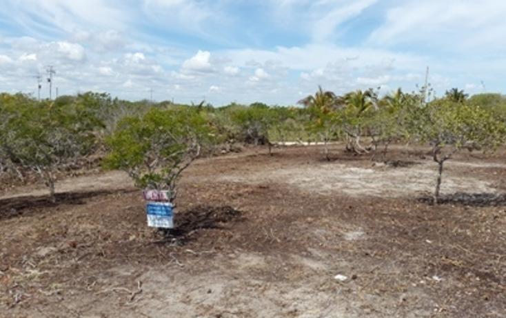 Foto de terreno habitacional en venta en, chicxulub puerto, progreso, yucatán, 937791 no 11