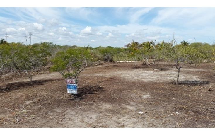 Foto de terreno habitacional en venta en  , chicxulub puerto, progreso, yucatán, 937791 No. 11