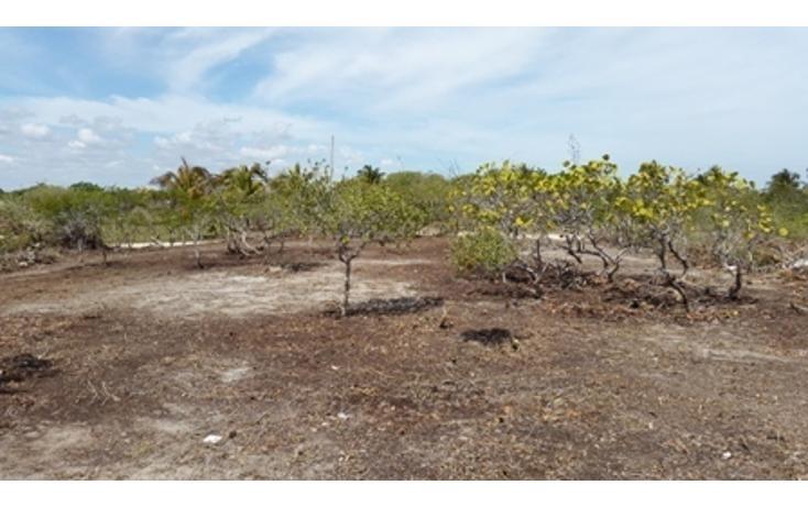 Foto de terreno habitacional en venta en  , chicxulub puerto, progreso, yucatán, 937791 No. 12