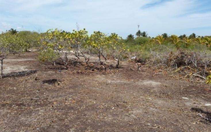 Foto de terreno habitacional en venta en, chicxulub puerto, progreso, yucatán, 937791 no 14