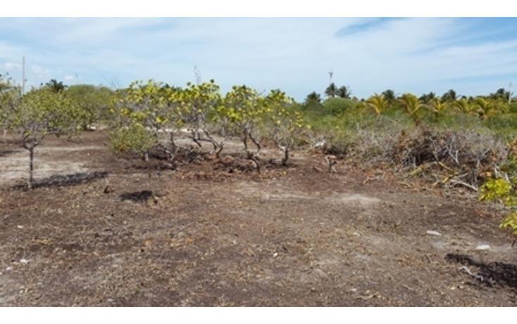 Foto de terreno habitacional en venta en  , chicxulub puerto, progreso, yucatán, 937791 No. 14