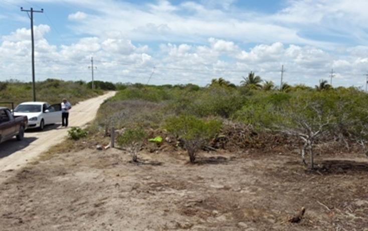 Foto de terreno habitacional en venta en, chicxulub puerto, progreso, yucatán, 937791 no 15