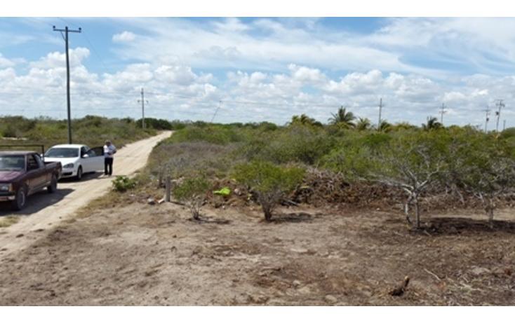 Foto de terreno habitacional en venta en  , chicxulub puerto, progreso, yucatán, 937791 No. 15