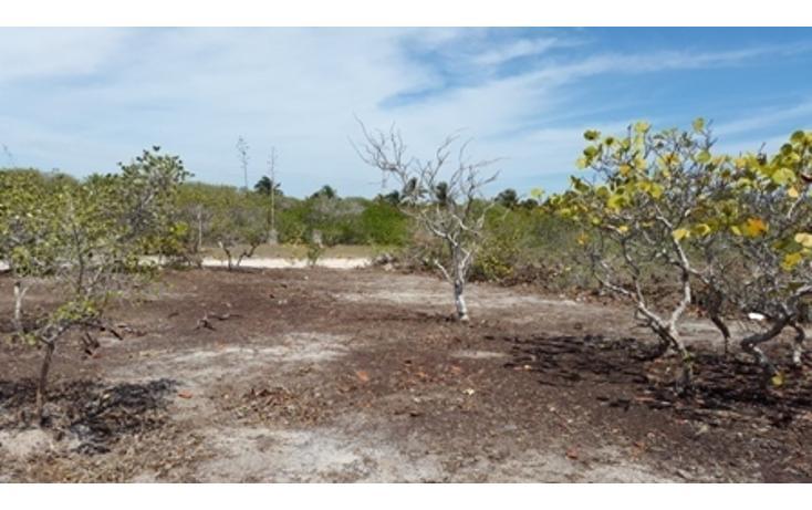 Foto de terreno habitacional en venta en  , chicxulub puerto, progreso, yucatán, 937791 No. 16