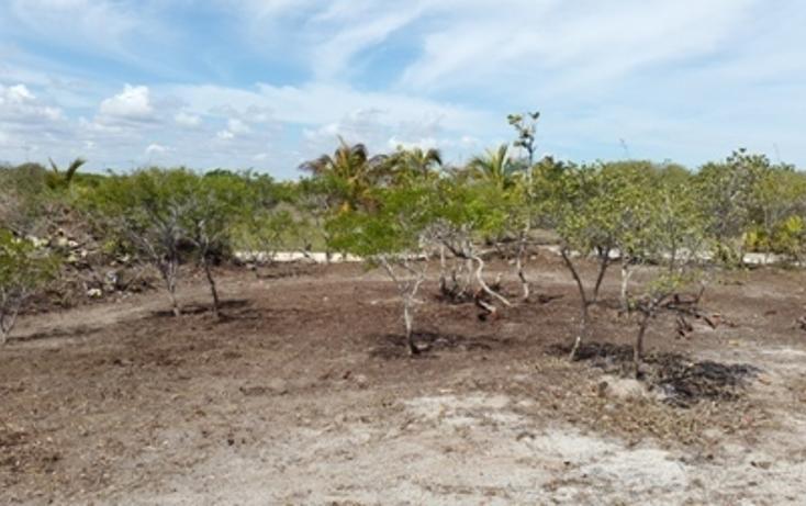 Foto de terreno habitacional en venta en, chicxulub puerto, progreso, yucatán, 937791 no 17