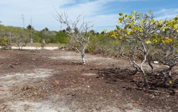 Foto de terreno habitacional en venta en, chicxulub puerto, progreso, yucatán, 937791 no 18
