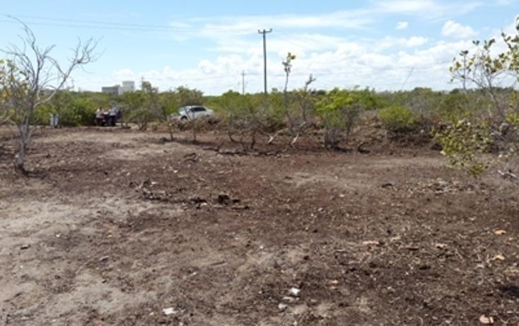 Foto de terreno habitacional en venta en, chicxulub puerto, progreso, yucatán, 937791 no 19