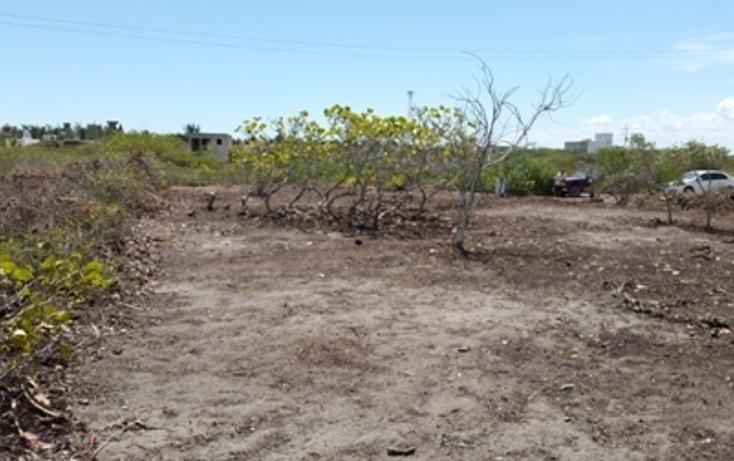 Foto de terreno habitacional en venta en  , chicxulub puerto, progreso, yucatán, 937791 No. 20