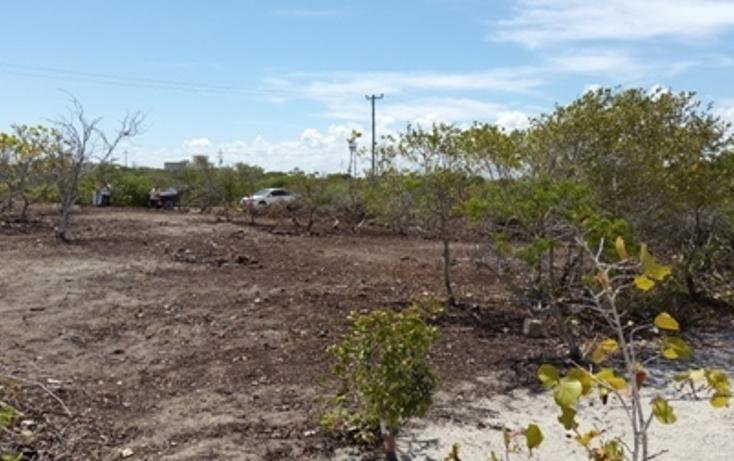 Foto de terreno habitacional en venta en, chicxulub puerto, progreso, yucatán, 937791 no 21