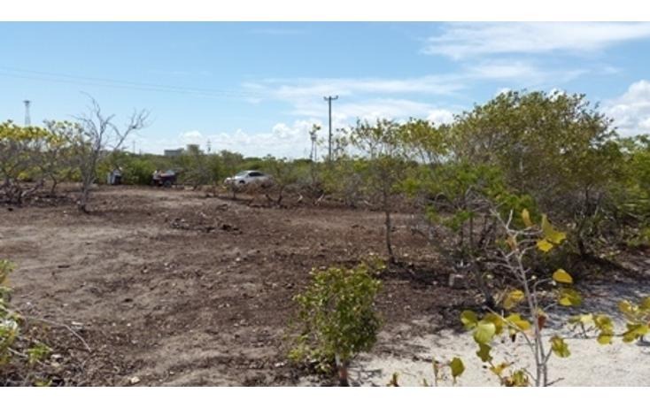 Foto de terreno habitacional en venta en  , chicxulub puerto, progreso, yucatán, 937791 No. 21