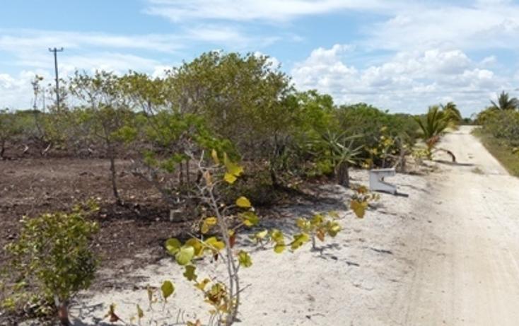 Foto de terreno habitacional en venta en, chicxulub puerto, progreso, yucatán, 937791 no 22