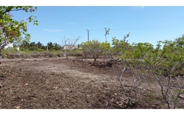 Foto de terreno habitacional en venta en  , chicxulub puerto, progreso, yucatán, 937791 No. 23