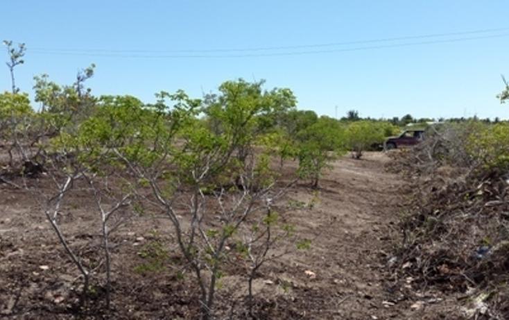 Foto de terreno habitacional en venta en, chicxulub puerto, progreso, yucatán, 937791 no 24