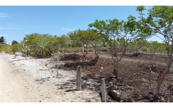Foto de terreno habitacional en venta en  , chicxulub puerto, progreso, yucatán, 937791 No. 25