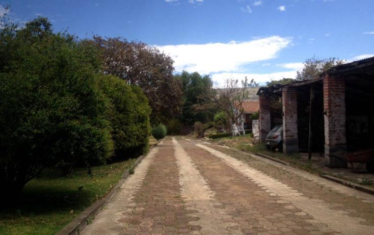 Foto de terreno habitacional en venta en  , chilchota centro, chilchota, michoac?n de ocampo, 1750824 No. 01