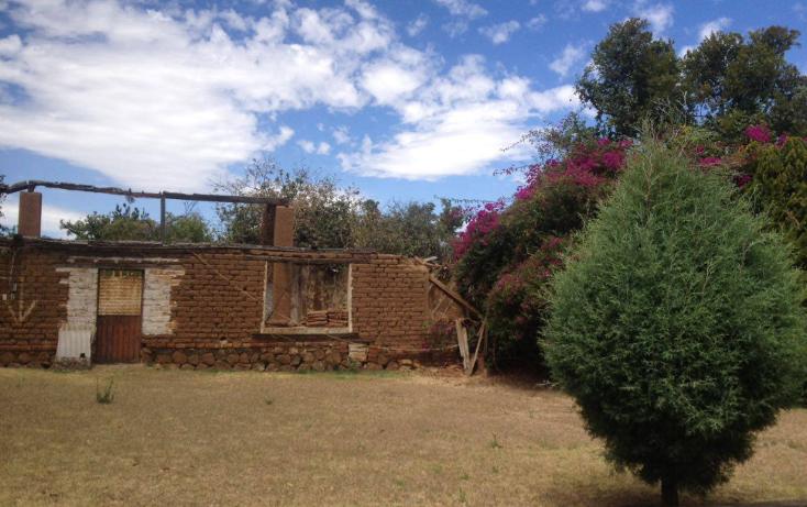 Foto de terreno habitacional en venta en  , chilchota centro, chilchota, michoac?n de ocampo, 1750824 No. 06