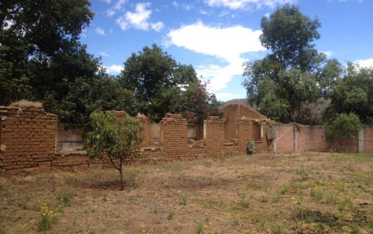 Foto de terreno habitacional en venta en  , chilchota centro, chilchota, michoac?n de ocampo, 1750824 No. 08