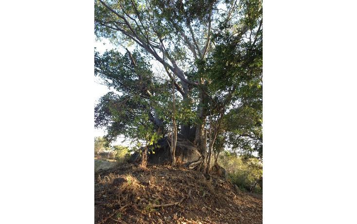 Foto de terreno habitacional en venta en chivato 0, residencial santa bárbara, colima, colima, 2649190 No. 02