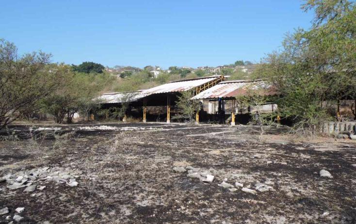 Foto de terreno habitacional en venta en  , chiverías (san antonio chiverías), zacatepec, morelos, 1769818 No. 01