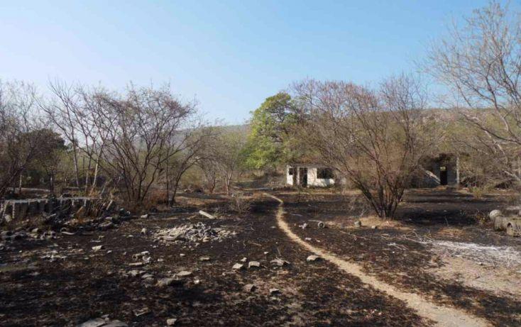 Foto de terreno habitacional en venta en, chiverías san antonio chiverías, zacatepec, morelos, 1769818 no 03