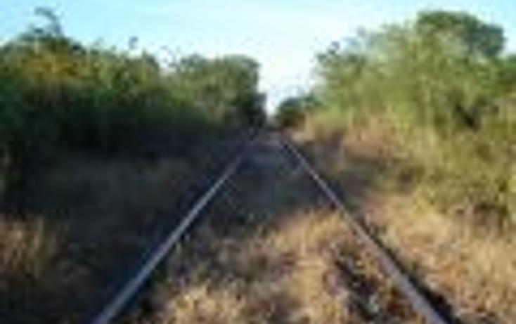Foto de terreno comercial en venta en  , chochola, chocholá, yucatán, 1096843 No. 03