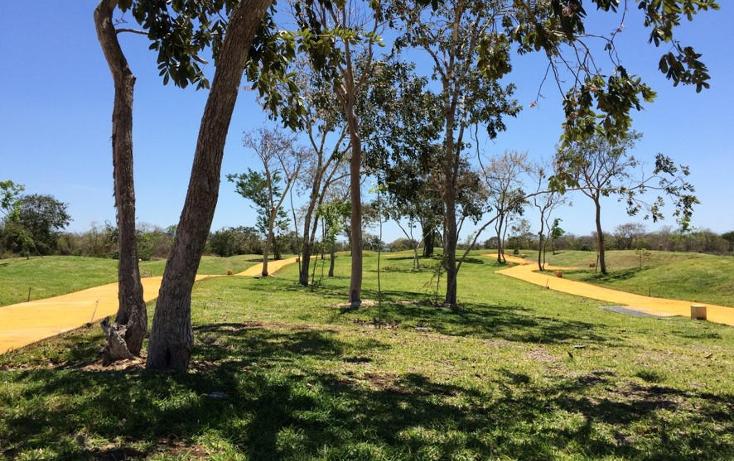 Foto de terreno habitacional en venta en  , cholul, mérida, yucatán, 1040657 No. 06