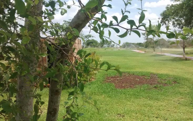 Foto de terreno habitacional en venta en, cholul, mérida, yucatán, 1040657 no 09