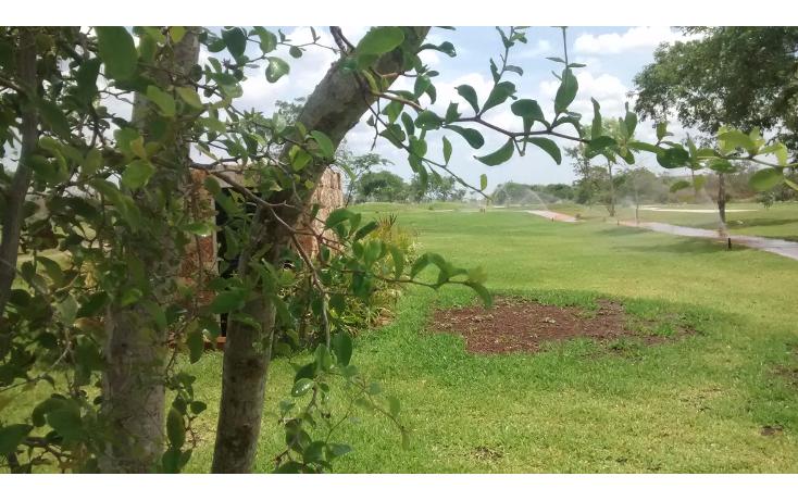 Foto de terreno habitacional en venta en  , cholul, mérida, yucatán, 1040657 No. 09