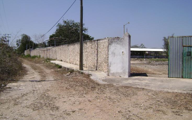 Foto de terreno habitacional en venta en  , cholul, mérida, yucatán, 1062977 No. 04