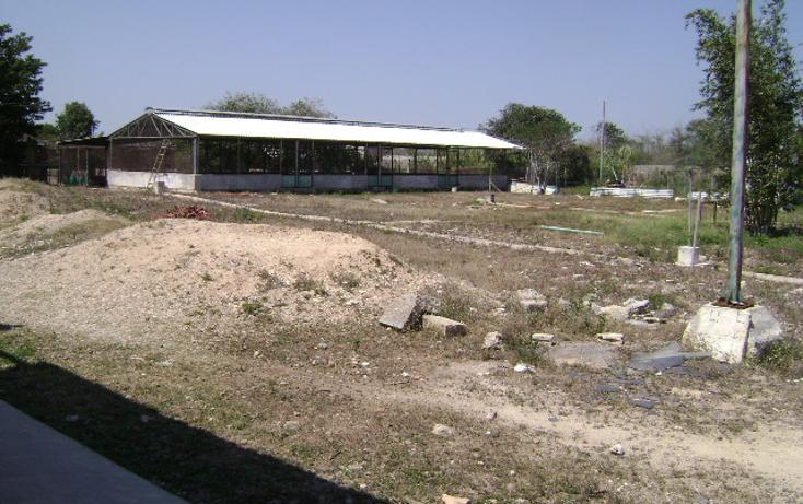 Foto de terreno habitacional en venta en  , cholul, mérida, yucatán, 1062977 No. 05