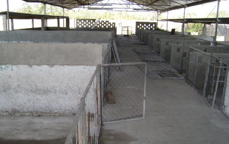 Foto de terreno habitacional en venta en  , cholul, mérida, yucatán, 1062977 No. 08