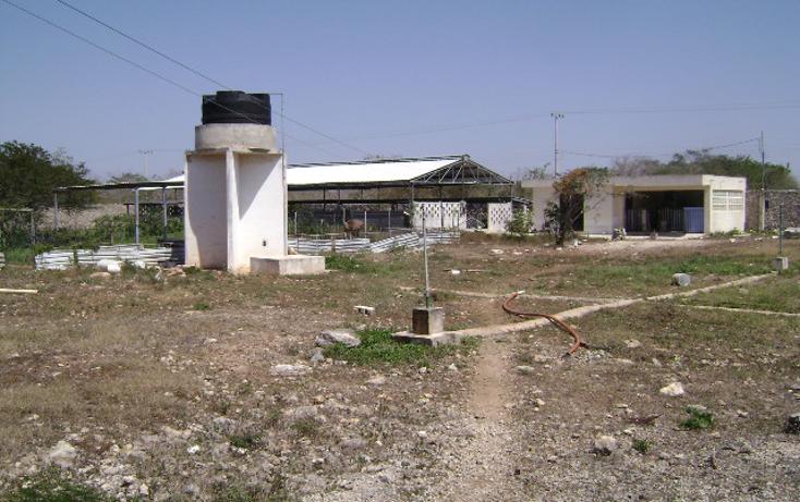 Foto de terreno habitacional en venta en  , cholul, mérida, yucatán, 1062977 No. 12