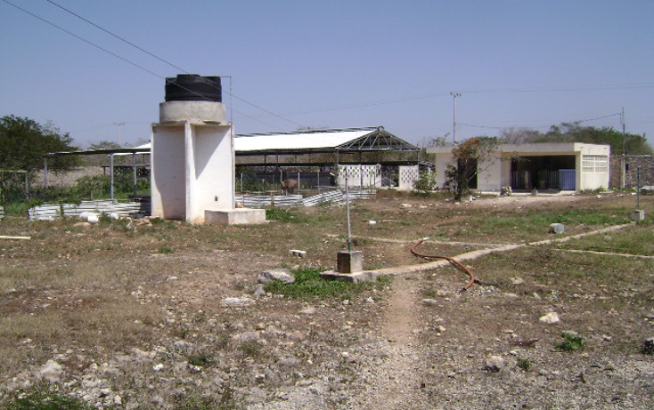 Foto de terreno habitacional en venta en  , cholul, m?rida, yucat?n, 1062977 No. 12