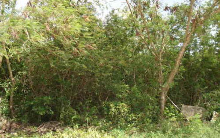 Foto de terreno habitacional en venta en, cholul, mérida, yucatán, 1088829 no 01