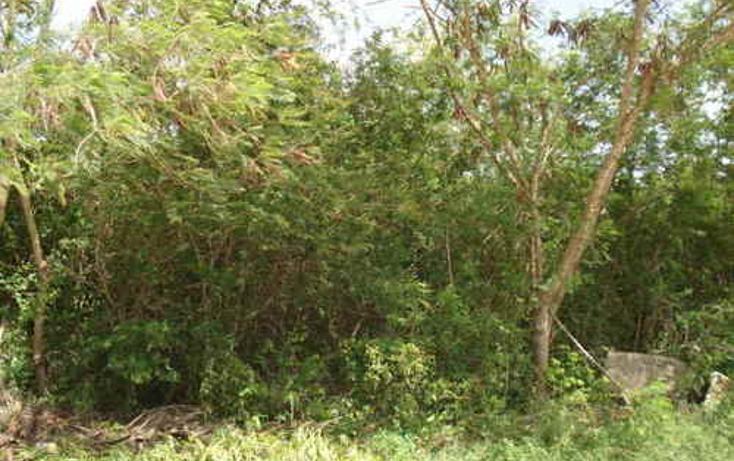 Foto de terreno habitacional en venta en  , cholul, mérida, yucatán, 1088829 No. 01