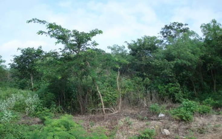 Foto de terreno habitacional en venta en  , cholul, mérida, yucatán, 1088831 No. 02