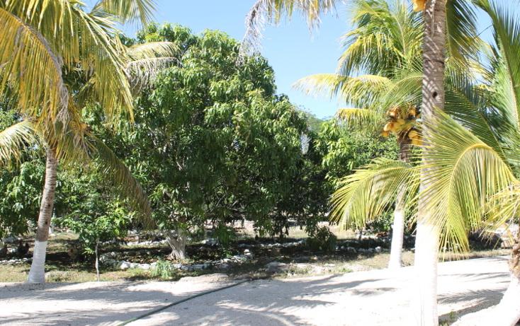 Foto de casa en venta en  , cholul, mérida, yucatán, 1111385 No. 04