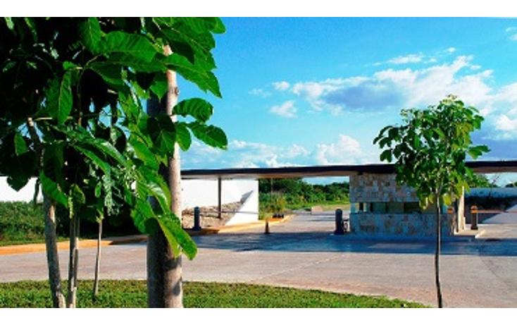 Foto de terreno habitacional en venta en  , cholul, mérida, yucatán, 1146881 No. 04