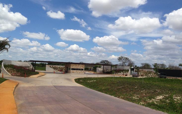 Foto de terreno habitacional en venta en  , cholul, mérida, yucatán, 1190135 No. 05
