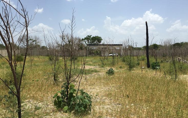 Foto de terreno habitacional en venta en  , cholul, m?rida, yucat?n, 1255793 No. 05