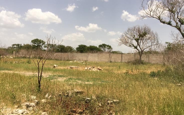 Foto de terreno habitacional en venta en  , cholul, m?rida, yucat?n, 1255793 No. 06