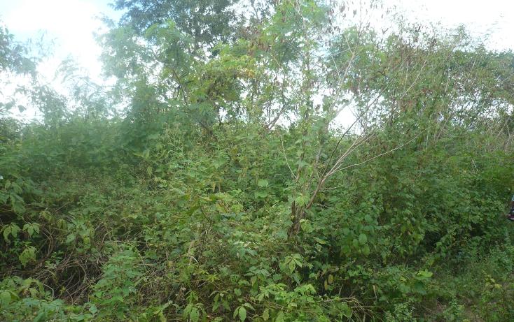Foto de terreno habitacional en venta en  , cholul, m?rida, yucat?n, 1264507 No. 01