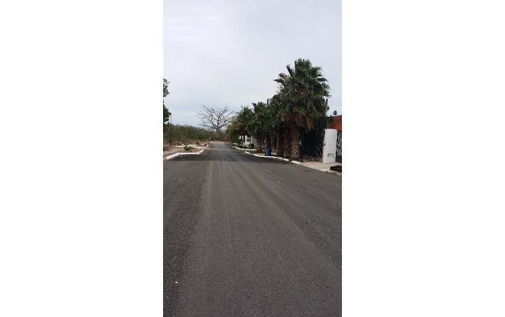 Foto de terreno habitacional en venta en  , cholul, m?rida, yucat?n, 1266891 No. 03