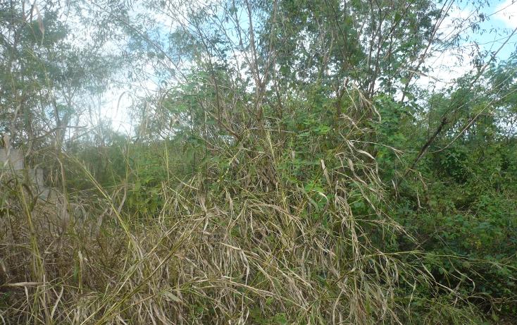 Foto de terreno habitacional en venta en  , cholul, mérida, yucatán, 1267959 No. 02