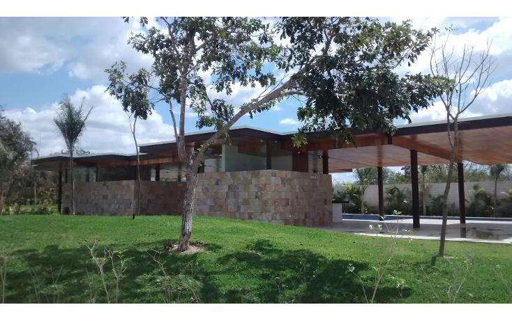 Foto de terreno habitacional en venta en  , cholul, mérida, yucatán, 1271257 No. 02